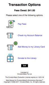 EnvisionWare eCommerce Transaction Options